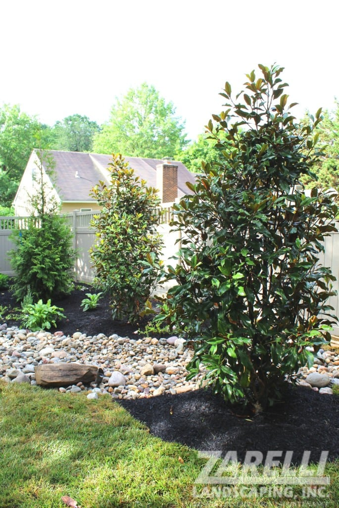 Landscaping and Maintenance