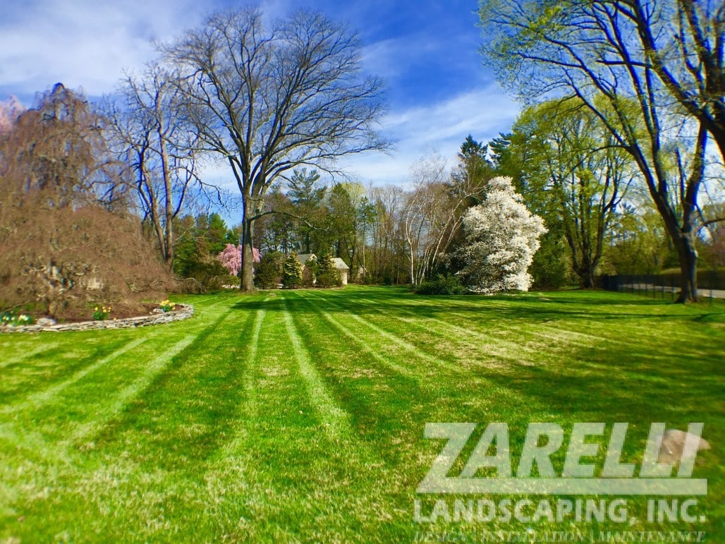 lawn cutting west chester