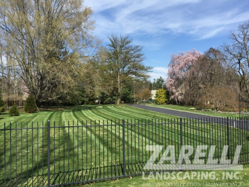 landscape maintenance and lawn mowing
