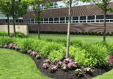rsz commercial landscape maintenance e1576721140613